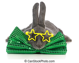 famous bunny