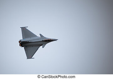 air fighter - twin engined delta wing highly agile multi...
