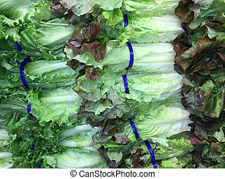 Romain lettuce - Fresh, crisp romaine lettuce nicely...