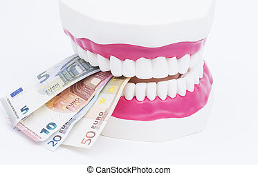 Tooth model with money - A tooth model with euro notes...