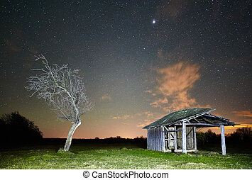 Night landscape with a barn and a tree on a meadow