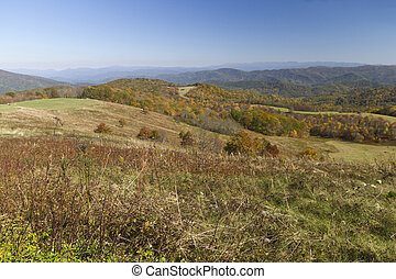 Max Patch Mountain Wilderness - Scenic view overlooking the...