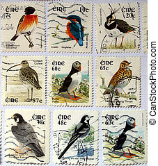 Range of Irish postage stamps with birds
