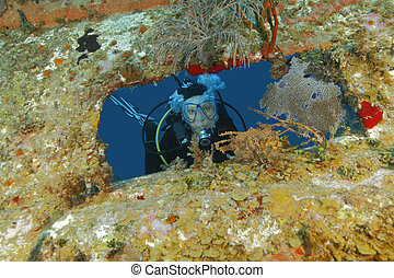 Scuba Diver Peering out From Opening in Shipwreck - Roatan -...