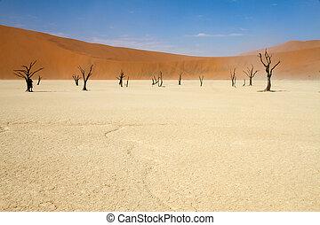 Sossusvlei desert, Namibia