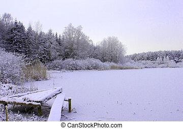 gefrorenes, See, in, wald, in, kalte, Winter, Jahreszeit,