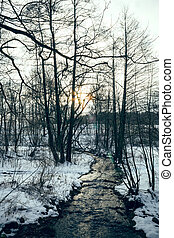 Stream in winter landscape - A creek with trees and snow in...