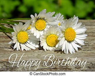 Birthday card - Image of birthday greetings with daisies