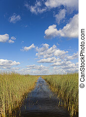 Florida Everglades - Waterway through the Florida Everglades...