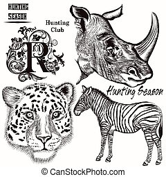Collection of hand drawn animals fo - Vector set of hand...