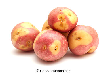 Canary islands potatoes, pink variety, isolated on white...