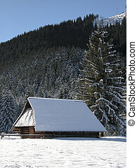 Old farm in the mountains at winter. Zakopane, Poland
