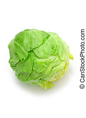 cabbage - studio shot of fresh cabbage on white background