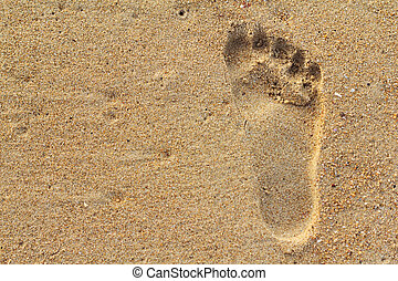 Footprints in the sand - Photo of Footprints in the sand