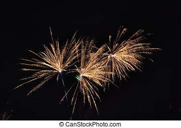 New years day - A fireworks photographed at Phoenix Lake in...