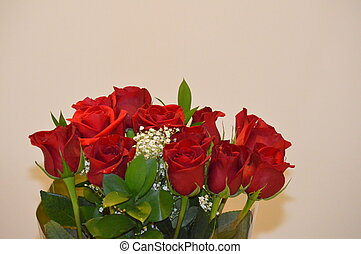 Red Roses picture background image