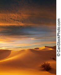 dunes - view of nice sands dunes at Sands Dunes National...
