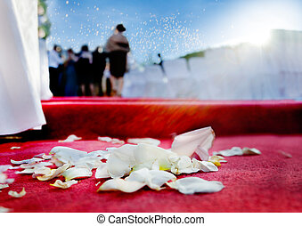 wedding petals of roses on red carpet