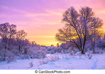 winter landscape with sunset and the forest - beautiful...