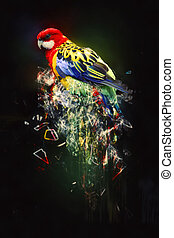 Parrot, abstract animal concept. Can be used for wallpaper,...