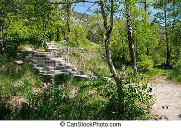 Stairs at the mountains at summer time near Almaty,...