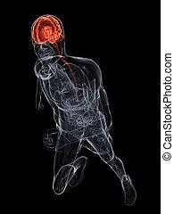 human brain - 3d rendered illustration of a running...