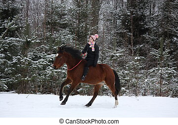 Beautiful teenager girl galloping on brown horse without...