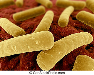 major bacteria - 3d rendered close up of some isolated...
