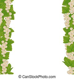 White currants border with leaves isolated on white...
