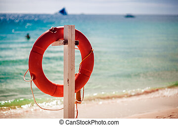 Lifebuoy on the beach, a tropical coastline
