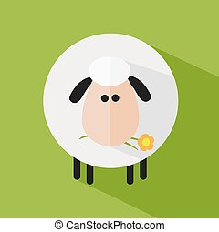 White Sheep With A Flower