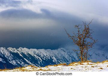 Piatra Craiului winter mountain ridge landscape