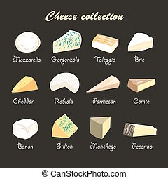 illustration of a collection of cheeses - graphic beautiful...