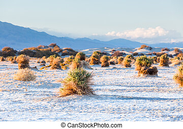 Death Valley - View of the Death Valley National park during...