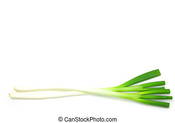 fresh scallion - studio shot of fresh scallion on white...
