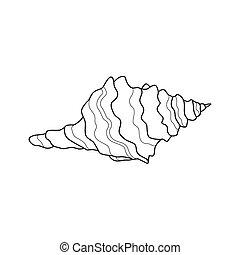 Vector Sea Shell - Vector Illustration of a Sea Shell