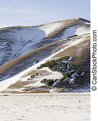 view of forest trees in snowy plateau of Castelluccio di...