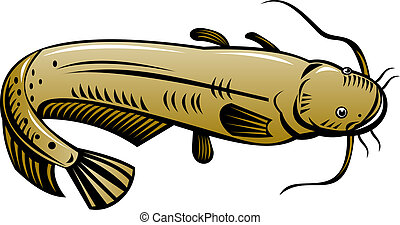 Catfish high angle - Illustration of a brown catfish high...