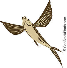 Brown flying fish - Illustration of a brown flying fish low...