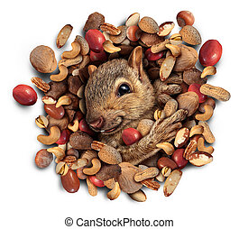 Squirrel Nut Burst - Squirrel nut burst concept as a cute...