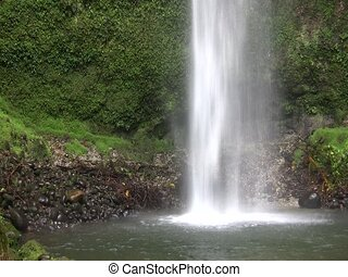 Waterfall in tropical rain forest - At Hola Vida reserve,...