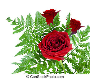 Three red roses with fern leaf
