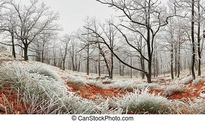 Winter forest at fog
