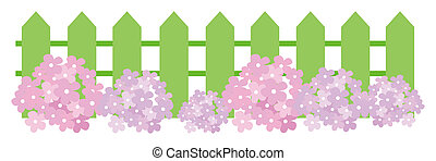 flower and green fence - illustration drawing of purple...