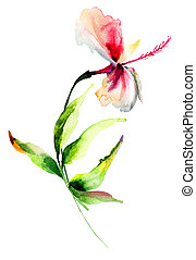 Red Hibiscus flower,watercolor painting