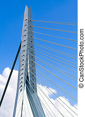 Erasmus Bridge Pilons - Erasmus Bridge details Pilons and...
