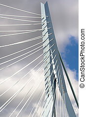 Erasmus Bridge. Pilons - Erasmus Bridge details. Pilons and...