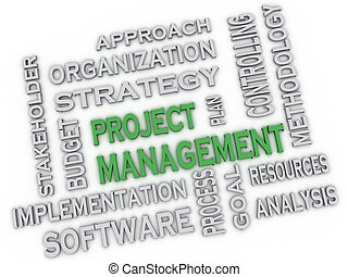3d image project management issues concept word cloud...