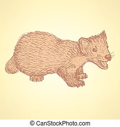 Sketch cute marten in vintage style, vector
