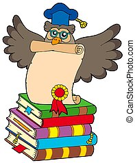 Wise owl with diploma and books - isolated illustration
